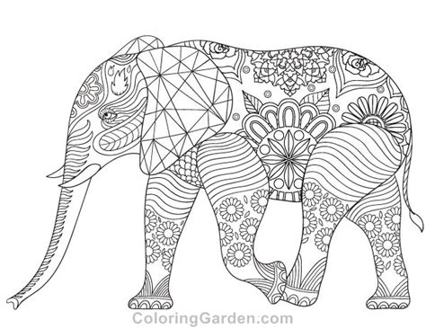 elephant coloring pages to print for adults 4114 best zentangles adult colouring images on pinterest