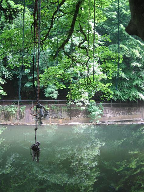 river swing rope swing bristol united kingdom uk