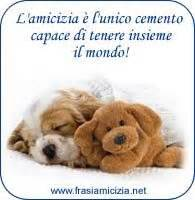 ricerca parole con lettere 1000 images about amicizia e on