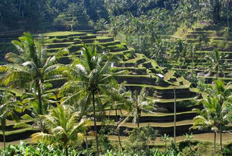 The Balinese travel must visit ubud bali simplynavy