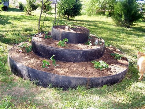 raised strawberry bed our strawberry bed recycled round baler belts peacecreekontheprairie com