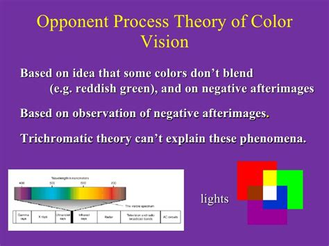 opponent process theory of color physio 3