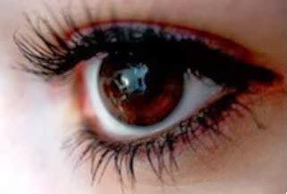 Sisir Bulu Mata cara memanjangkan bulu mata secara alami kumpulan tips