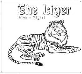 liger coloring page animals town animals color sheet