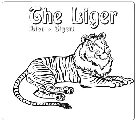 Liger Coloring Pages Zoids Chaotic Century Free Coloring Pages