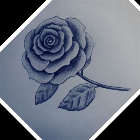 dibujos a lapiz imagenes gratis imagenes de dibujos a lapiz de rosas imagenes de dibujos