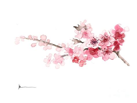 cherry blossom watercolor tattoo tattoos on cherry blossoms chen and watercolors