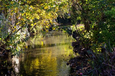 Dover Gardens by Panoramio Photo Of Autumn Reflections In The River Dour