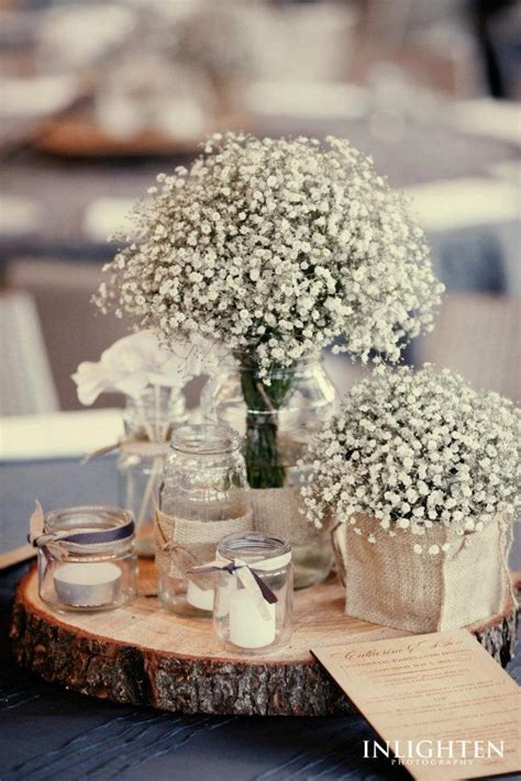gipsofila gypsophila tree trunks and centerpieces