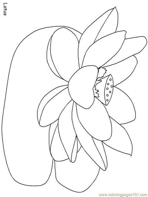 india coloring pages pdf coloring pages india lotus countries gt india free