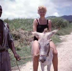 Cute Photo Album Donkeyriders Love Burros Donkey Riders