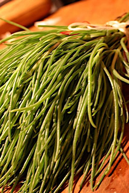 Monk's beard   Recipes Wiki