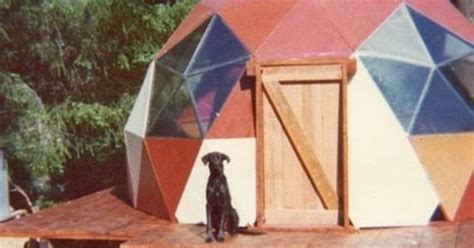 pin by marah ingalsbe on my home pinterest dog and geodesic dome the green life