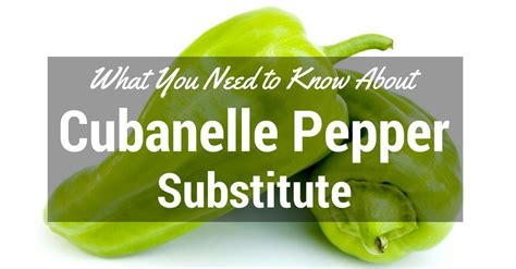 top 28 substitute for pepper substitute for chipotle seasoning what you need to know about