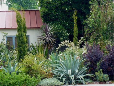rentals com company blog 187 blog archive summer decorating top 28 plants for front garden 301 moved permanently