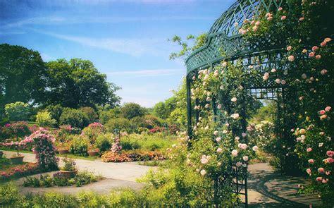 New York Botanical Garden Membership Garden Light Photograph By Jenney