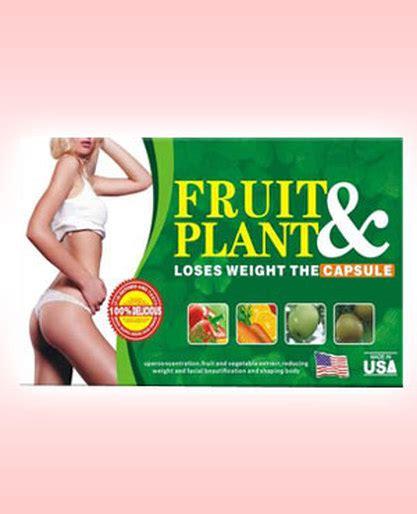 obat pelangsing fruit plant herbal aneka obat pelangsing