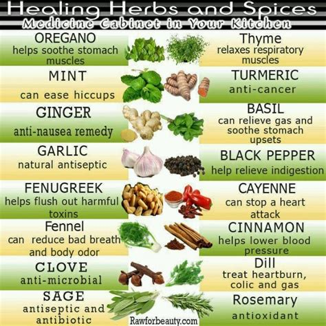Detox Herbs And Spices by Herbs Spices Detox Spice And Health Benefits