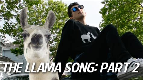 all i need is the music house song the llama song part 2 youtube