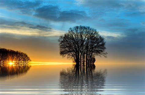 imagenes en png de paisajes free photo sunset sea landscape tree free image on