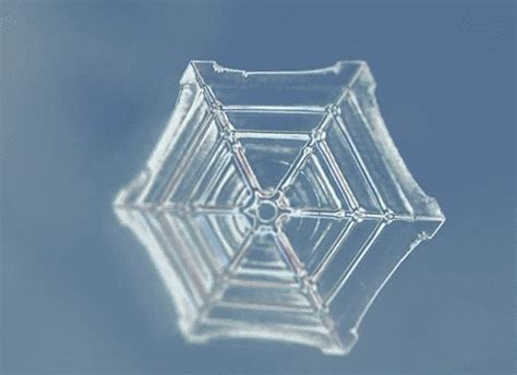 Snowflake Pattern Gif | sacred geometry known is a drop unknown is an ocean