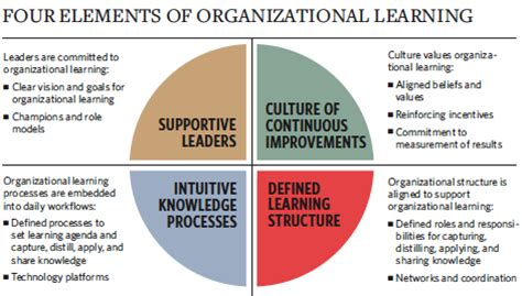 organisational learning 3 elements of organisational