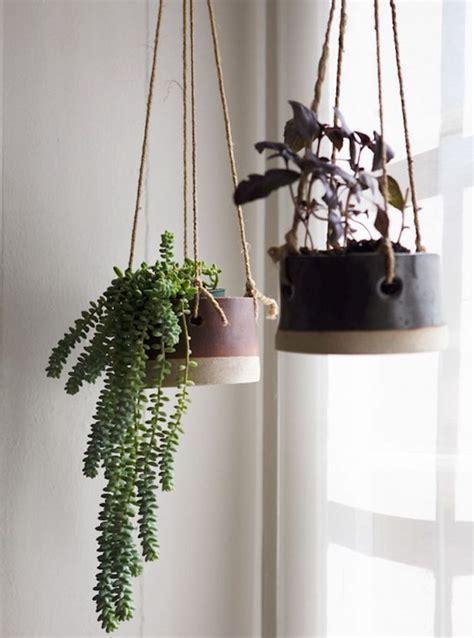 Incroyable Pot Pour Plante Aromatique Interieur #6: Plante-tombante-plante-suspendue-plantes-retombantes.jpg