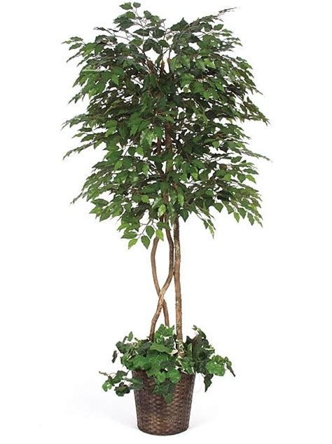 indoor decorative trees for the home how do i clean artificial indoor trees