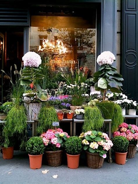 Fleurs Belle Boutique De Fleurs Pinterest Beautiful Garden Flower Shop