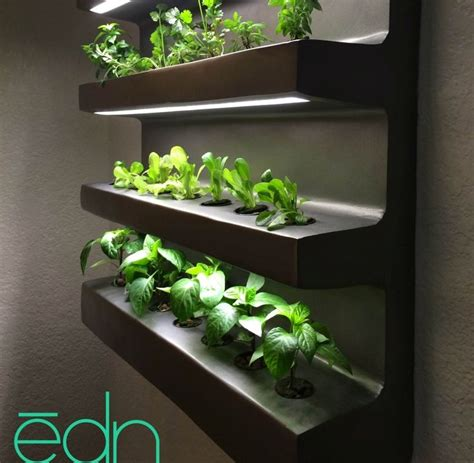 indoor vegetable garden nyc best 25 wall herb gardens ideas on diy pallet vertical planter vertical garden