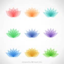 Colorful Lotus Flower Variety Of Colorful Lotus Flowers Vector Free