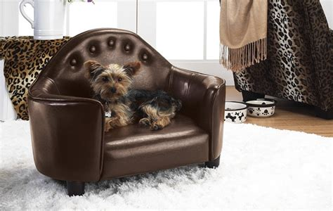 best leather couch for dogs modern and contemporary pet products updated daily