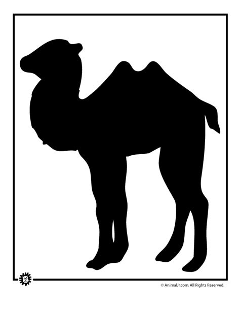 camel template camel template woo jr activities
