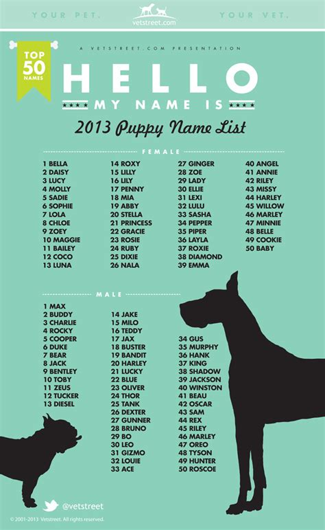 puppy themed names most popular puppy names 2013