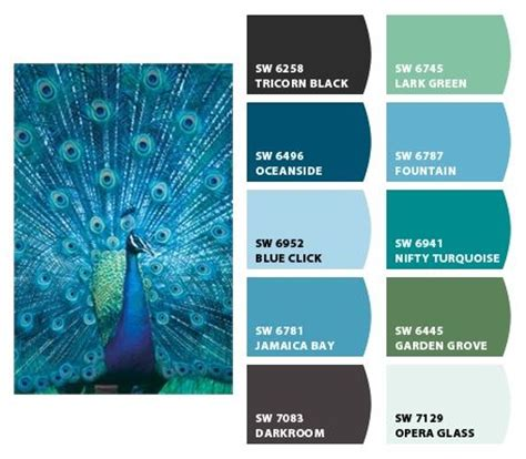 best 25 peacock color scheme ideas on peacock colors tone bedroom and