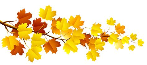 clipart autunno decorative autumn leaves clipart clipartix