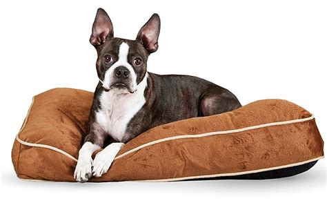 dog couch alarm doggy beds homemade dog bed surprising 12 diy beds living