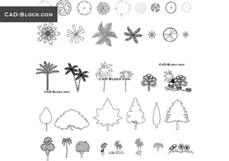 tree templates for autocad trees in plan and elevation cad blocks