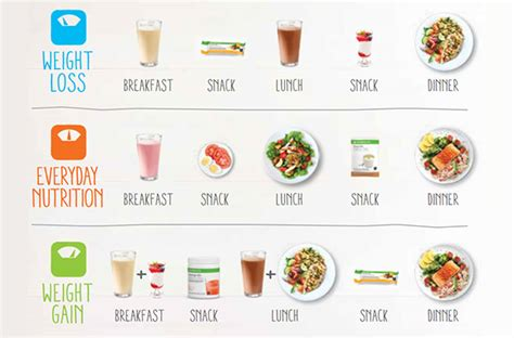 weight management meal plan herbalife meal plan healthy