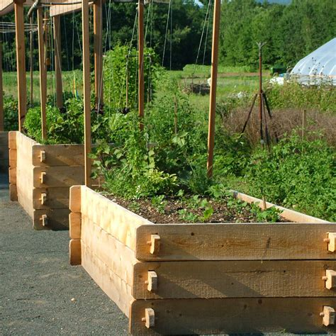 Raised Bed Designs by Farmstead Raised Garden Bed Eartheasy