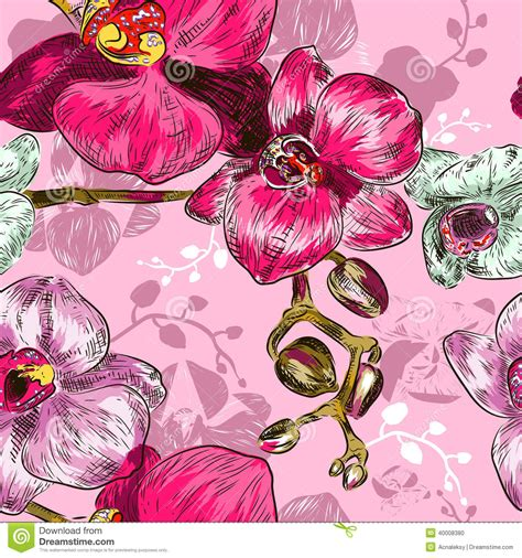 orchid pattern vector seamless orchid pattern stock vector image of abstract