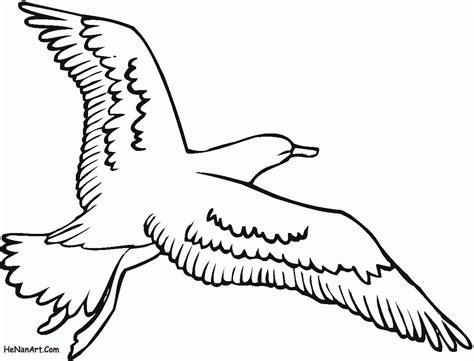 free coloring pages flying birds free coloring pages of flying bird outline