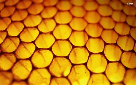 yellow honeycomb pattern background hq free download 10778 honeycomb wallpapers pattern hq honeycomb pictures 4k