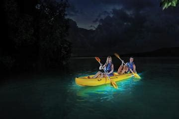 glass bottom boat tours in puerto rico bioluminescence tour white sand water sports