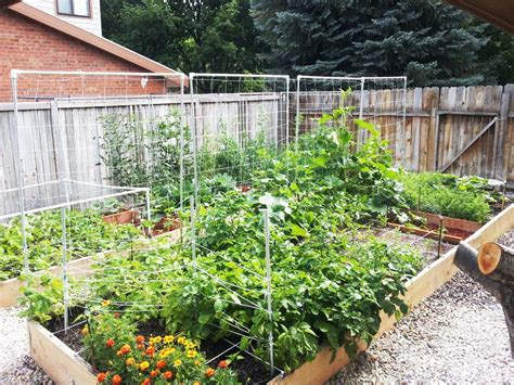 raised garden beds  tips  planning building