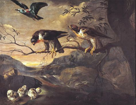 Animal Roller Date St a roller two peregrine falcons and a eared owl with