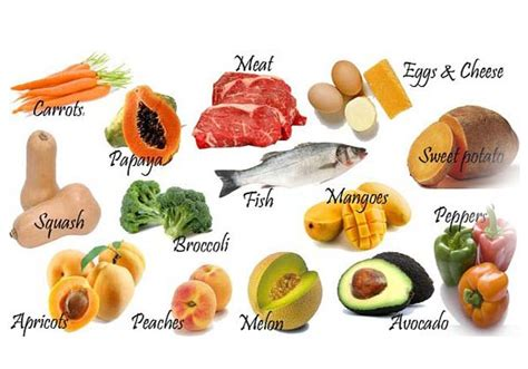Daily Dose Of Food by Vitamin B12 Foods Daily Dose Evehow