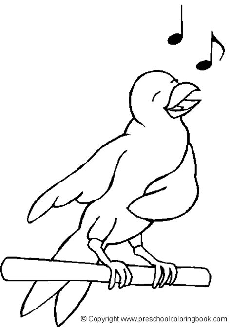 preschool coloring pages of birds www preschoolcoloringbook com bird coloring page