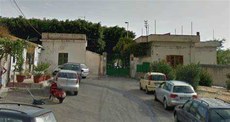 ufficio igiene palermo cani sotto sequestro dirigenti comunali indagati live