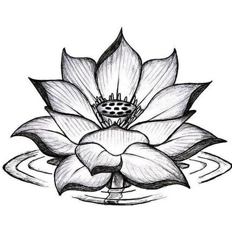 grey flower tattoo designs 18 lotus tattoos designs